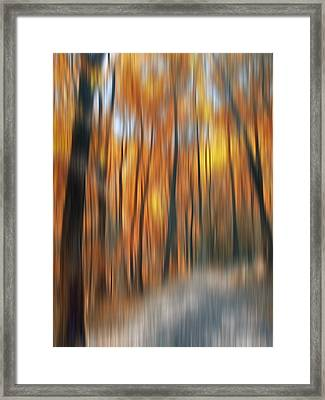 Peaceful Path Framed Print by Susan Candelario