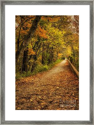 Peaceful Pathway Framed Print by Cheryl Davis