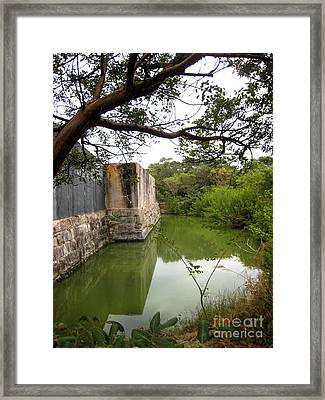 Peaceful Pond Framed Print by Claudette Bujold-Poirier