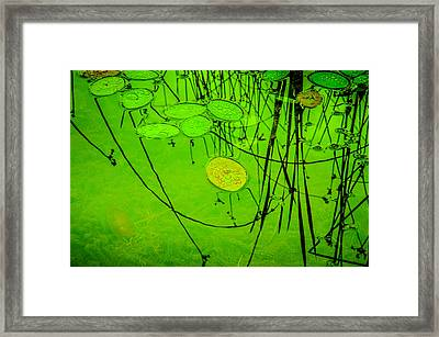 Peaceful Reflections In Green Framed Print by Roxy Hurtubise