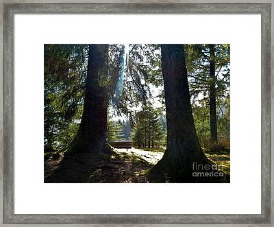 Framed Print featuring the photograph Peaceful Setting  by Laura  Wong-Rose