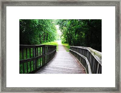 Peaceful Walkway Framed Print by Stephanie Grooms