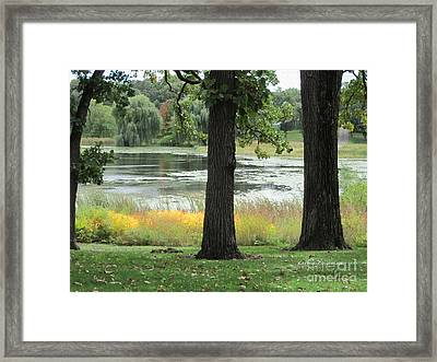 Peaceful Water Framed Print