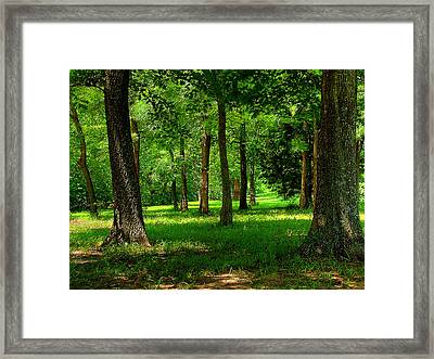 Peaceful Framed Print