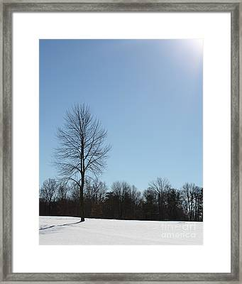 Framed Print featuring the photograph Peaceful Winter Scene by Anita Oakley