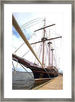 Framed Print featuring the photograph Peacemaker by Gordon Elwell