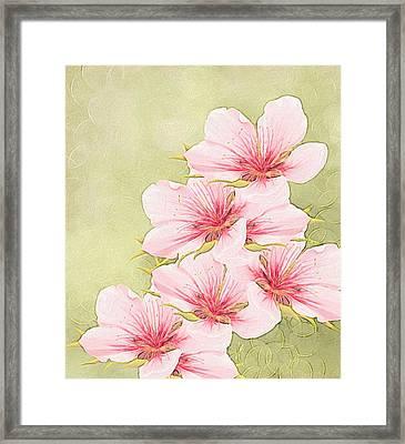 Peach Blossom Framed Print by Veronica Minozzi