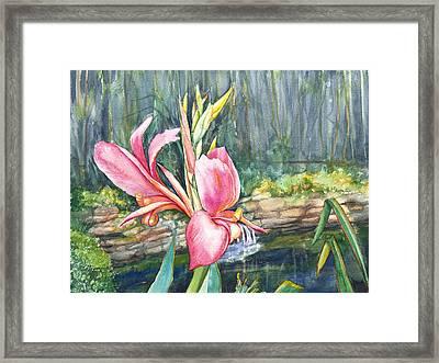 Peach Canna By The Pond Framed Print by Patricia Allingham Carlson