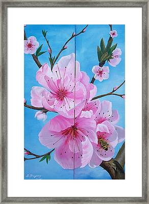 Peach Tree In Bloom Diptych Framed Print