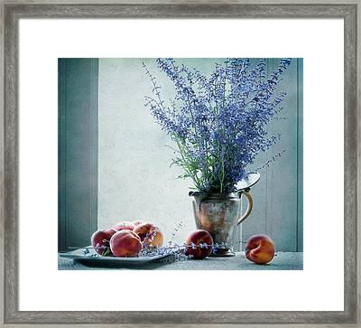 Peaches And Blues Framed Print by Maggie Terlecki