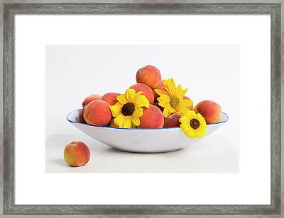 Peaches And Sunflowers Framed Print by Diane Macdonald