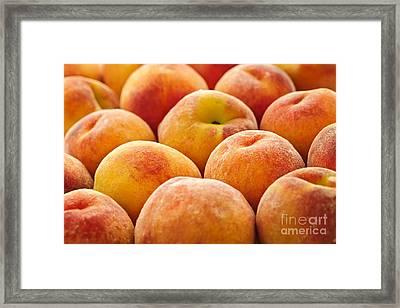 Peaches Framed Print by Elena Elisseeva