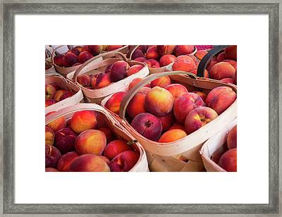 Peaches For Sale At A Farmers Market Framed Print by Julien Mcroberts
