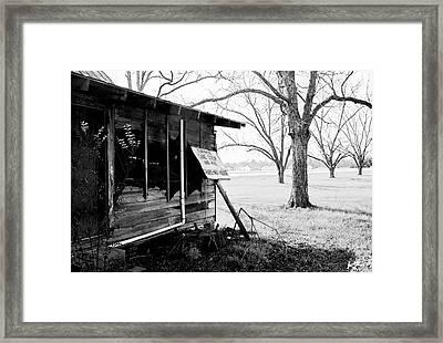 Peaches Framed Print by Katie Farmer