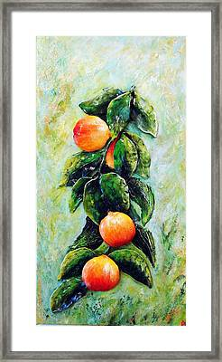 Peachy Day Framed Print