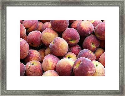 Peachy Framed Print by Denise Pohl