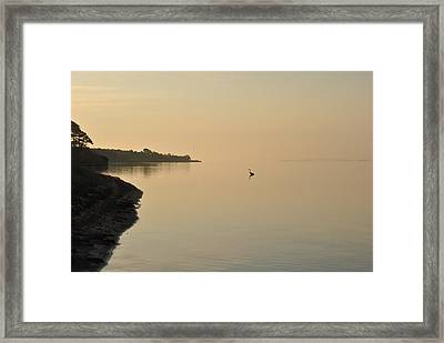 Peachy Morning Framed Print by Michele Kaiser