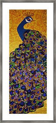 Peacock Blue Framed Print