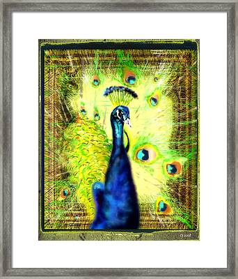 Framed Print featuring the drawing Peacock by Daniel Janda