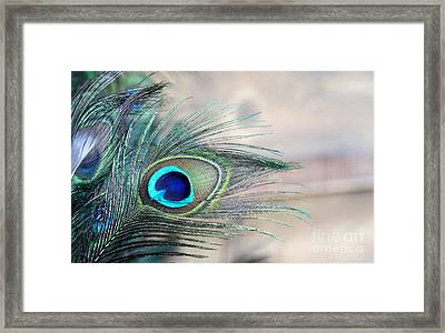 Peacock Eye Framed Print
