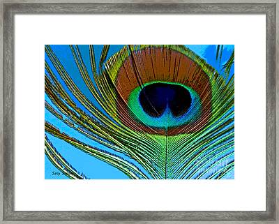 Peacock Feather 3 Framed Print