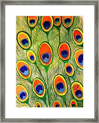 Peacock Feather Frenzy Framed Print