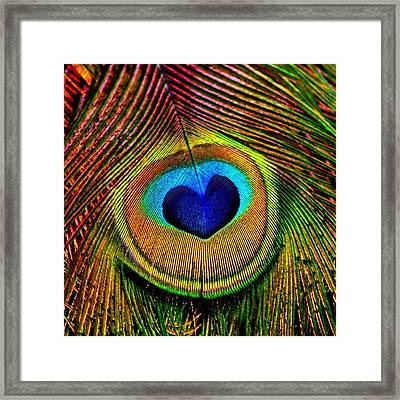 Peacock Feathers Eye Of Love Framed Print by Tracie Kaska