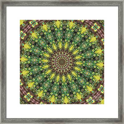 Peacock Feathers Kaleidoscope 3 Framed Print