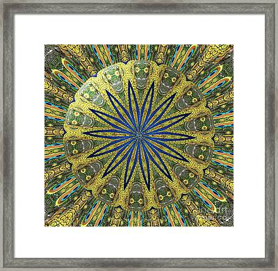 Peacock Feathers Kaleidoscope Under Glass  1 Framed Print