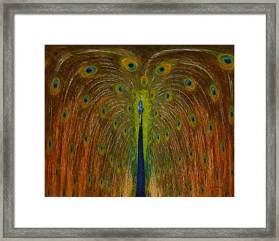 Peacock Fountain Framed Print