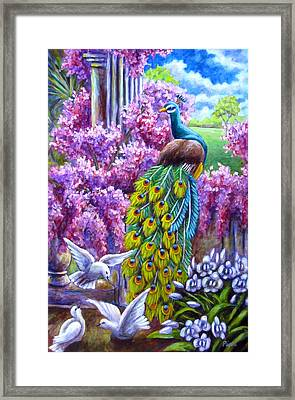 Peacock From A Dream Framed Print by Sebastian Pierre