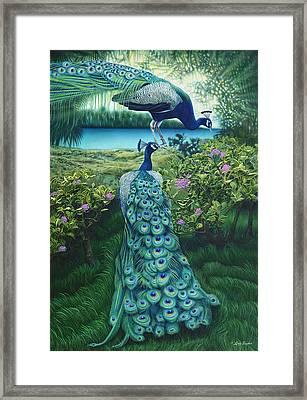 Peacock Garden Framed Print by Larry Taugher