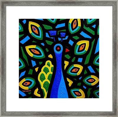 Peacock IIi Framed Print by John  Nolan