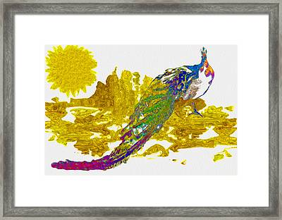 Peacock - It Happened At The Zoo Framed Print by Jack Zulli