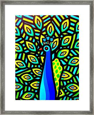 Peacock Iv Framed Print by John  Nolan