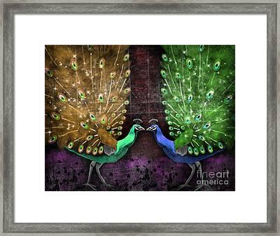 Peacock Magic Framed Print by Karen Sheltrown