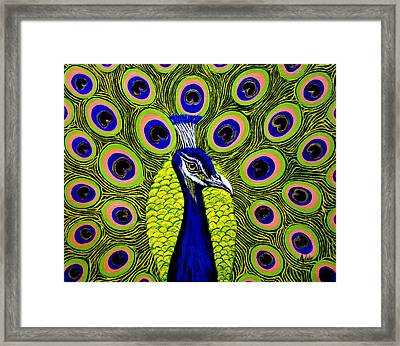 Peacock Mistique Framed Print by Adele Moscaritolo