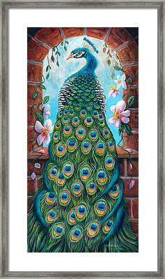 Peacock Perching In An Arch Window Framed Print