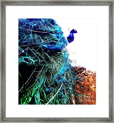 Peacock Portrait Framed Print