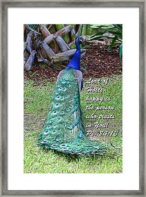 Peacock Psalms 84v13 Framed Print by Linda Phelps