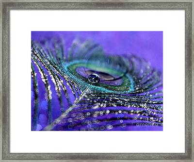 Peacock Spirit Framed Print