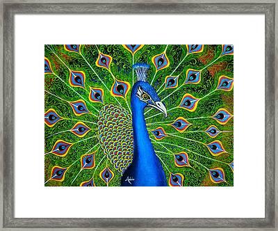 Peacock Splendor Framed Print