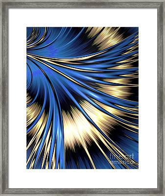 Peacock Tail Feather Framed Print