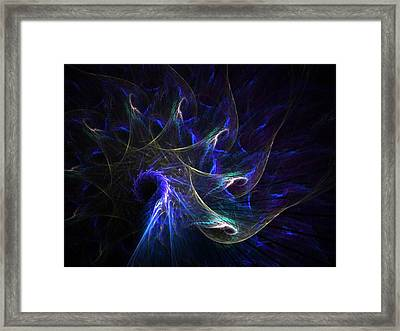 Peacock's Tail Feathers Framed Print by Nancy Pauling