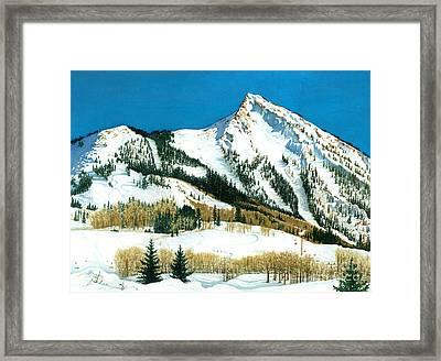 Peak Adventure Framed Print by Barbara Jewell