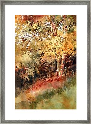 Peak Color Framed Print by Kris Parins