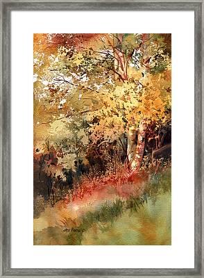 Peak Color Framed Print