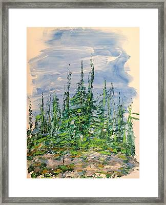 Peak Of Pines Framed Print