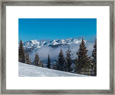 Peaking Out Framed Print