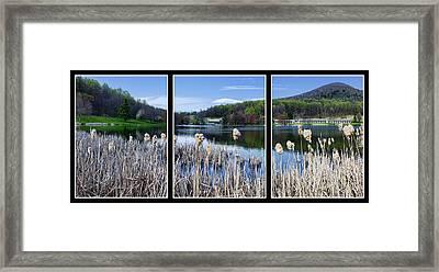 Peaks Of Otter Lodge Triptych Framed Print by Steve Hurt